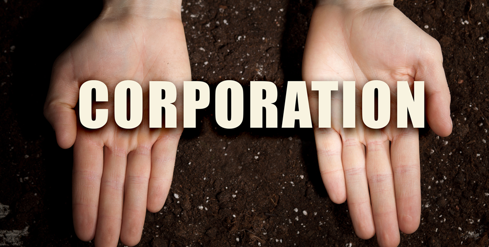 Is a C Corporation Right for Me?
